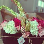 ziz_flores