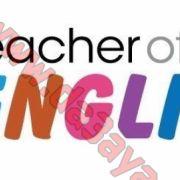 مدرس لغة انجليزية خبرة طويلة بالتدريس