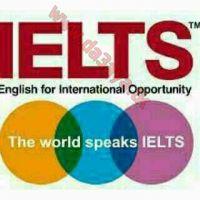 مدرس اول لغة انجليزية جامعات و قدرات وايلتس