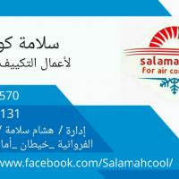 Hesham Sayed Ibrahim Salama